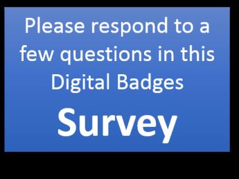 dig badge survey